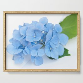 Blue Hydrangeas #1 #decor #art #society6 Serving Tray