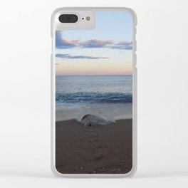 Rough Shore Clear iPhone Case