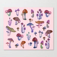 Mushrooms Pink!! Canvas Print