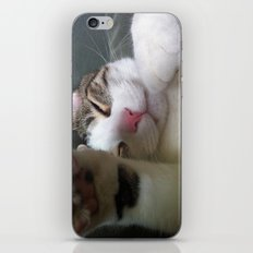 Best Cat that ever lived iPhone & iPod Skin