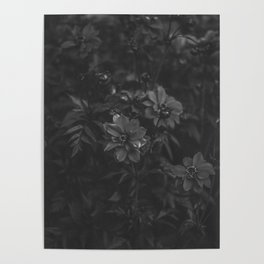 Floral (Black and White) Poster