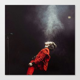 Harry on stage #1 Canvas Print
