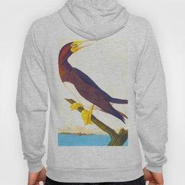 Booby Gannet Bird Hoody