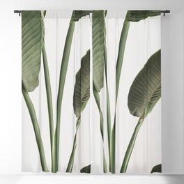 Tropical Palm Banana Plant Leaf Blackout Curtain