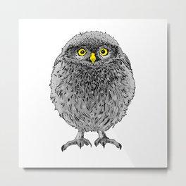 Fluffy cute baby owl Metal Print