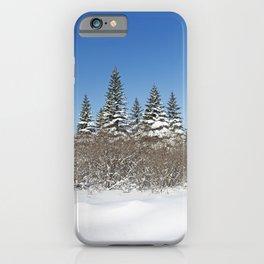 Winter Wonderland 3 iPhone Case