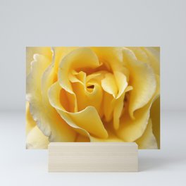 Single Yellow Rose Mini Art Print