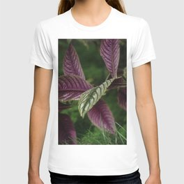 Exotic leaves T-shirt