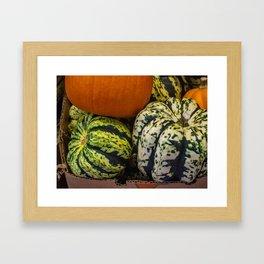 Green Gordgeous Gourds Framed Art Print