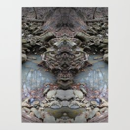 Mirrored Riverbed Poster