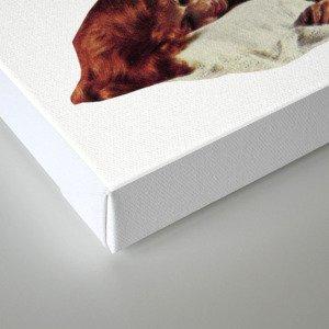 Sleep When You Die. Canvas Print