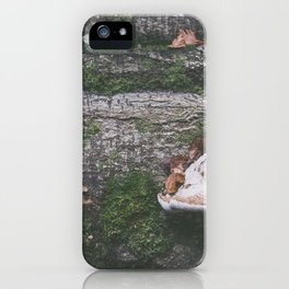 Forest (III) iPhone Case