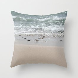 Seashore Sandpipers in tideland Throw Pillow