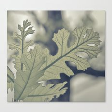 I Must Have Dreamt Myself Astray Canvas Print