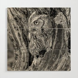 Echo the Screech Owl by Teresa Thompson Wood Wall Art
