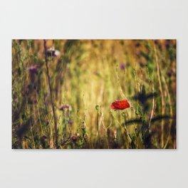 Wildflower Warriors Canvas Print