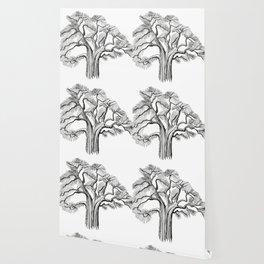 Old large branching tree graphics Wallpaper