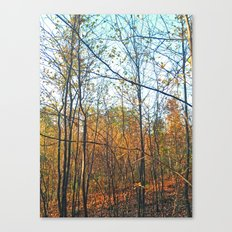Vertical Parallels Canvas Print