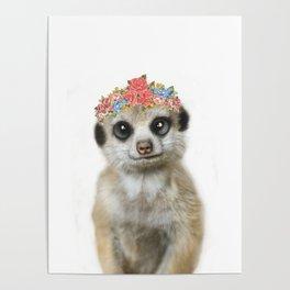 Meercat wirh flower crown Poster