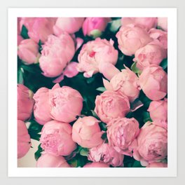Paris Peonies Art Print