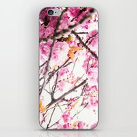 martell iPhone & iPod Skins featuring Seattle Blossoms by G Martell