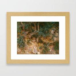 Valdemosa, Majorca: Thistles and Herbage on a Hillside, 19 Framed Art Print