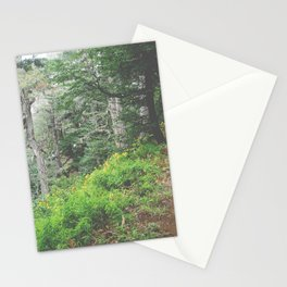 Patagonia V Stationery Cards