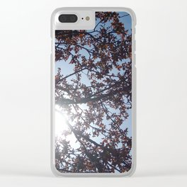 Sun Between Branches Clear iPhone Case