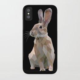 BROWN RABBIT iPhone Case