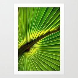 Green Burst Art Print