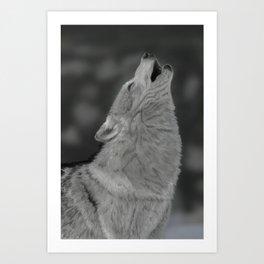 Lone Wolf Animal Digital Painting Art Print