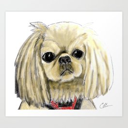 Cartoon dogs Li Li the Pekingese Art Print