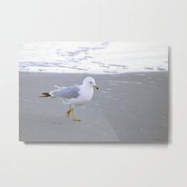 Sea Gull Stroll Metal Print