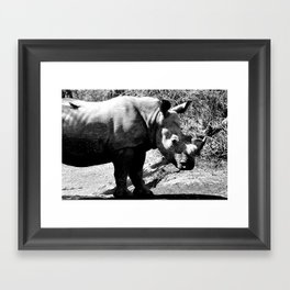 Rhino with Bird; Black and White Nature Photography from Africa Framed Art Print