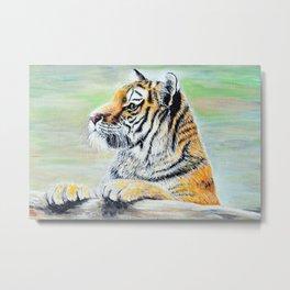 Curious Tiger Painting Metal Print