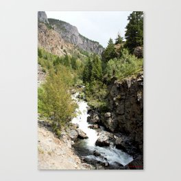 Headwaters of the Mighty Uncompahgre River Canvas Print