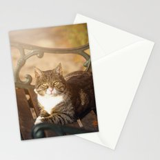 Cute cat relaxing in the sun Stationery Cards