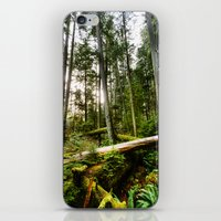 forrest iPhone & iPod Skins featuring Forrest by ILIA PHOTO + CINEMA