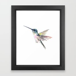 Flying Little Hummingbird Framed Art Print