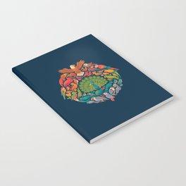 Aerial Rainbow Notebook