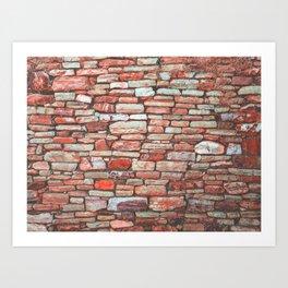 Brick Wall (Color) Art Print