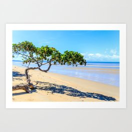 Beautiful day on the beach at Cape Tribulation, Queensland, Australia Art Print