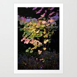 JW Photography Art Print