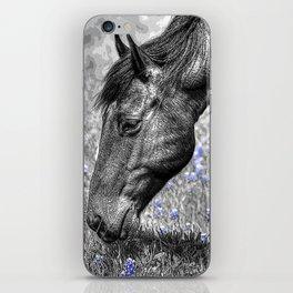 Horse & Bluebonnets iPhone Skin