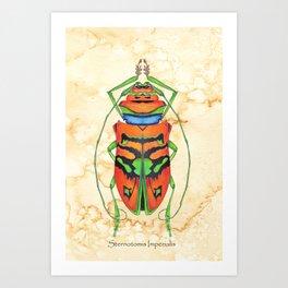 Sternotomis Imperialis Art Print