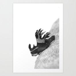 Fierce little nudibranch Art Print