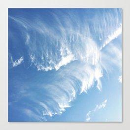 Sky Waves Canvas Print