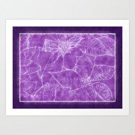 Mixed Color Poinsettias 2 Outlined Purple Art Print