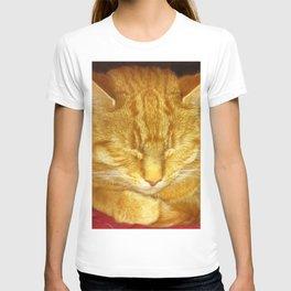 Sleeping Tom T-shirt