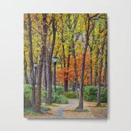 Walking into Autumn Metal Print